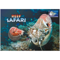 2018 Reef Safari Nautilus Stamp and Medallion Cover